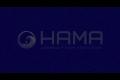 HAMA SUSHI RESTAURANT